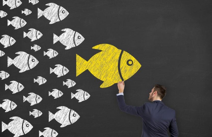Le Blog Web Theorie vous dit pourquoi et comment faire appel à des influenceurs